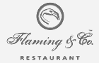 logo Flaming